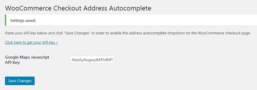 Google Maps Javascript API Key